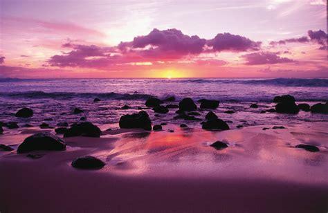 Sho Natur Di Indo hawaii sunset purple