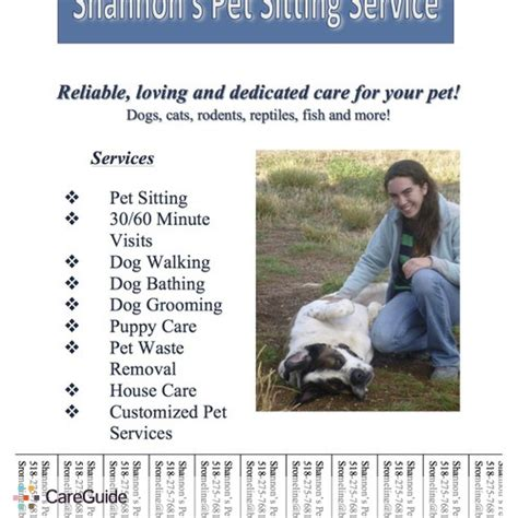 dog sitter jobs reliable pet sitter in taos nm pet care provider in