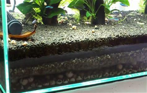 Pasir Zeolit Aquarium persiapan aquarium untuk ikan discus ikan hias air tawar