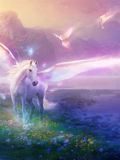 unicorn wallpaper for mac 768x1024 unicorn world desktop pc and mac wallpaper