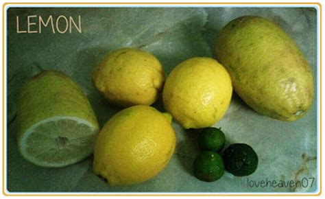 Manfaat Detox Lemon by Manfaat Jeruk Lemon Untuk Kesehatan Loveheaven07