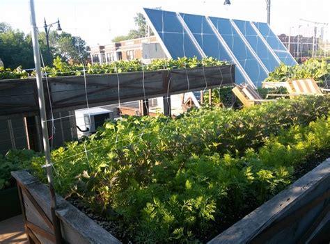 orto terrazza orto pensile giardino in terrazzo caratteristiche dell