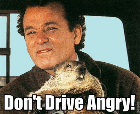 groundhog day driving don t drive angry flickr photo
