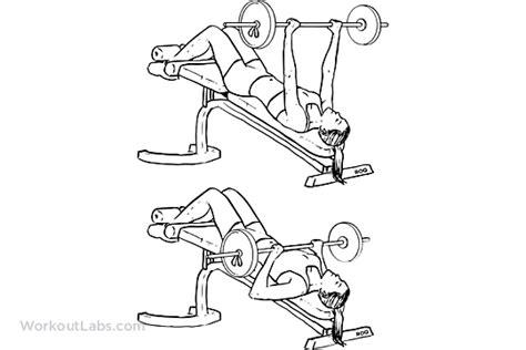 barbell decline bench press decline barbell bench press workoutlabs