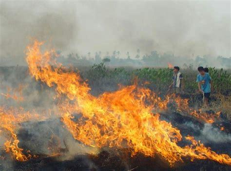 indonesian fires send smog  singapore malaysia