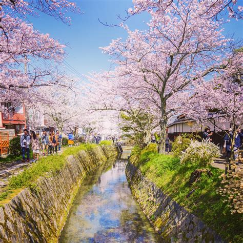 kyoto cities sights other places you need to visit tokyo yokohama osaka nagoya kyoto kawasaki saitama volume 5 books best places to visit in japan and other things you need to
