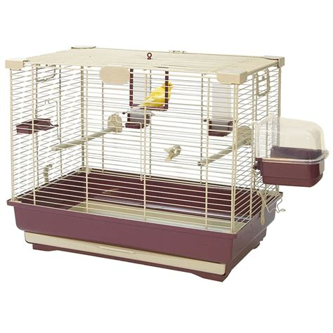 small cage tips to buy small bird cages for your pet birds