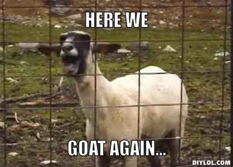Billy Goat Meme - community post 14 goat quotes for every occasion quotes