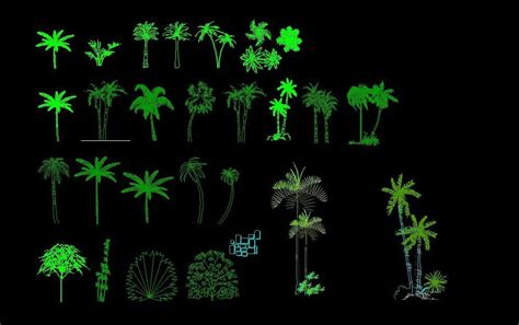 palm trees  trees front view elevation  dwg block