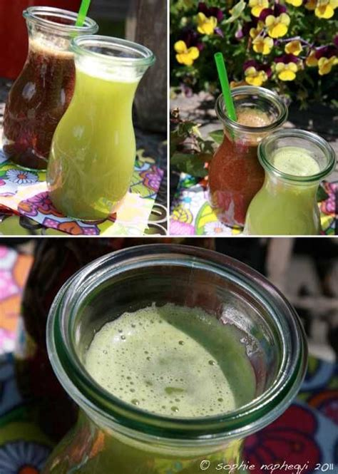 Rhubarb Detox by Rhubarb Carrot Juice Recipe Dishmaps
