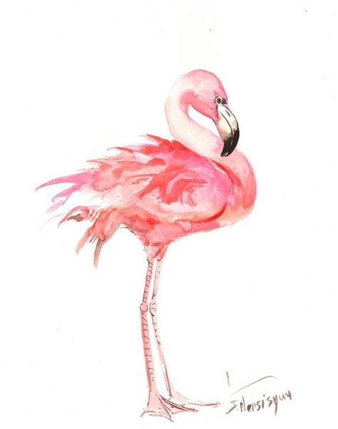 Flaminggo Top Ori Chi 202 best images about on
