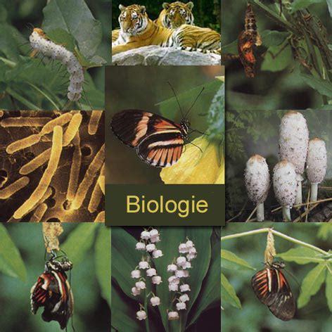 Collagen Biolo by Achtergrondmainframe
