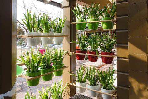 como tener un jardin en casa 7 beneficios de tener un jard 237 n o huerto vertical en casa