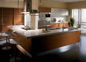 modern furniture modern kitchen design ideas 2011
