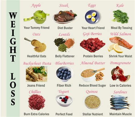 Healthy Foods For Losing Weight Your Ultimate Healthy Food Grocery List by Healthy Meals To Lose Weight Without Lose The Taste