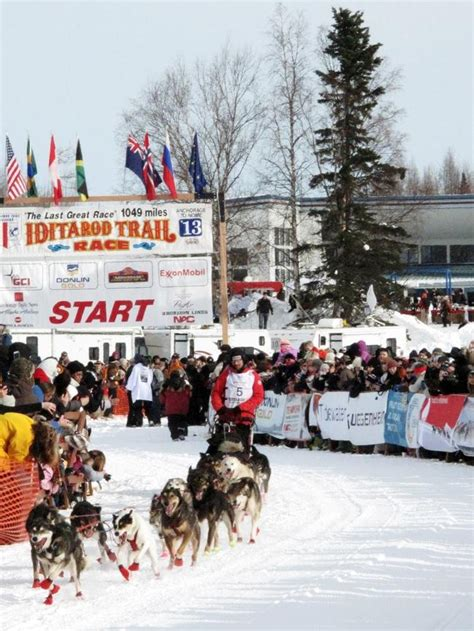 race in alaska iditarod sled race in alaska indiatimes