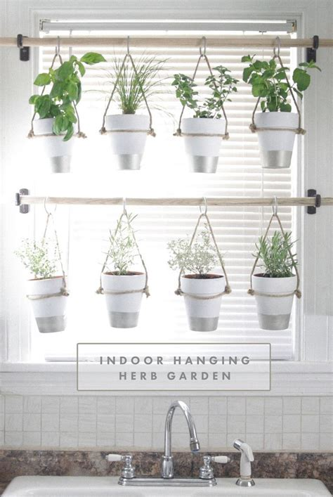 hanging window herb garden 25 best ideas about hanging plants on pinterest diy