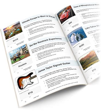 Auction Booklet Template Build Your Own Charity Auction Catalog Template Dtk Templates Auction Program Template