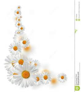 daisy border royalty free stock photo image 27755595