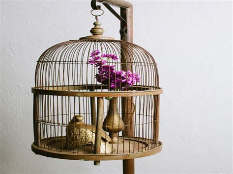 home interior bird cage boho decorating ideas decorating with bird cages bird