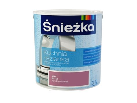 Anti Fungal Paint For Bathrooms How To Remove Mould From Walls śnieżka Farby Lakiery Kleje