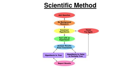 scientific method grade  proprofs quiz