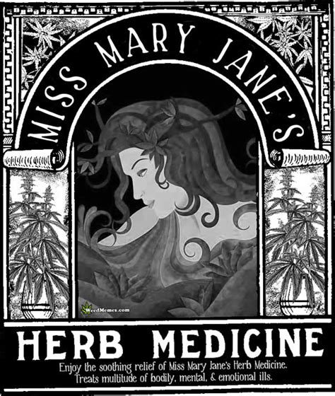 Mary Jane Memes - miss mary jane s herb medicine mmj poster weed memes