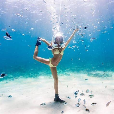 best underwater 15 best underwater photography images on