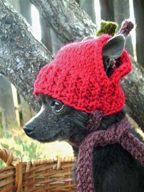 gorros tejidos dd puppy dog 161 mascotas a punto ideas para abrigar a los animales de la