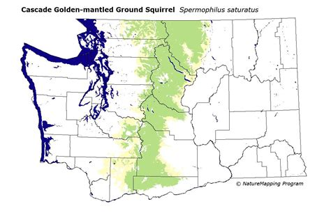 Cascades Mountains Washington images