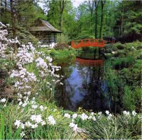 Pilze Im Garten Woher by Zimmer Und Gartenblumen
