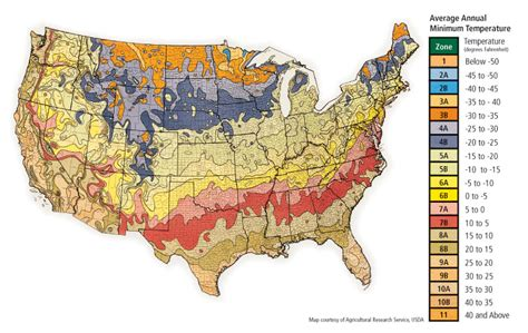 usda zone map hardiness map planting zones advanced tree technology