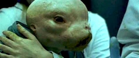 alien abduction l highly alarming us gov lifts ban on cross species