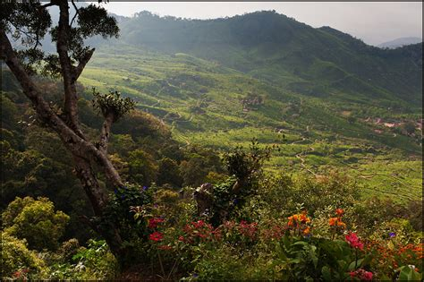 Landscape Photography In India India Landscape Photography Www Pixshark Images
