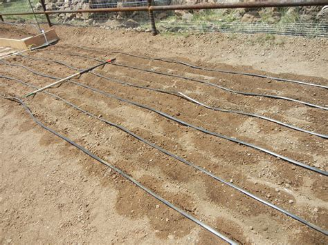 garden drip system irrigation gardenallie