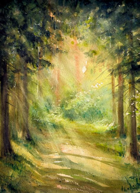 huayi forest sunshine photography backdrop scenery custom