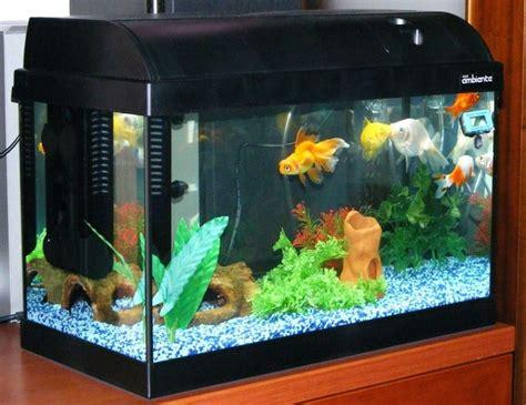 acquario per casa prezzi acquario in casa accessori per la casa realizzare un