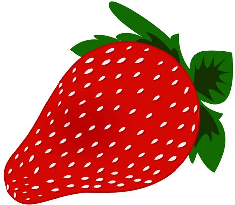 strawberry clipart strawberry vine clipart clipart panda free clipart images