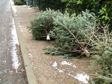 weihnachtsbaum abbauen 187 wann wie wird er entsorgt