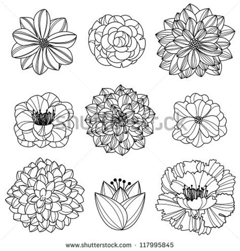 hand drawn flower pattern vector collection of hand drawn flowers 117995845