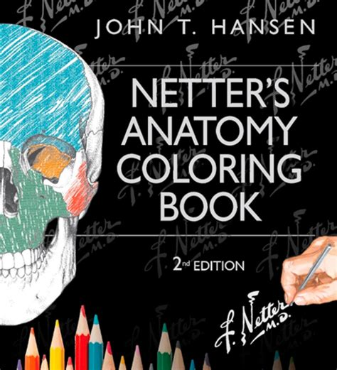 anatomy coloring book 4th edition human anatomy coloring book 4th edition kaplan anatomy