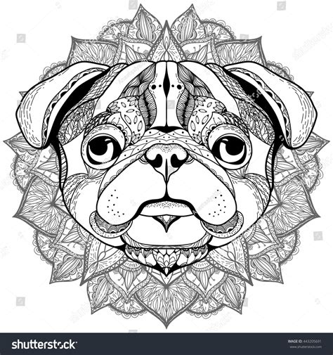 pug coloring pages for adults zentangle stylized pug imagem vetorial de banco 443205691