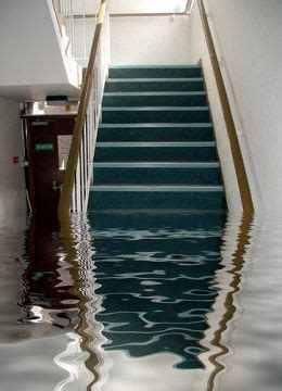 who to call for water in basement basement services carlsbad water damage 760 659