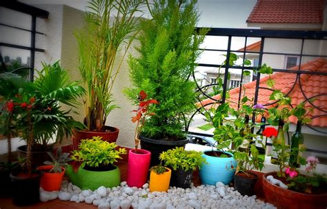apartment plants ideas balcony like a garden but in the air terrys fabrics s