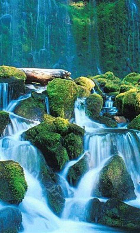 wallpaper live bagus download gratis air terjun hidup wallpaper gratis air