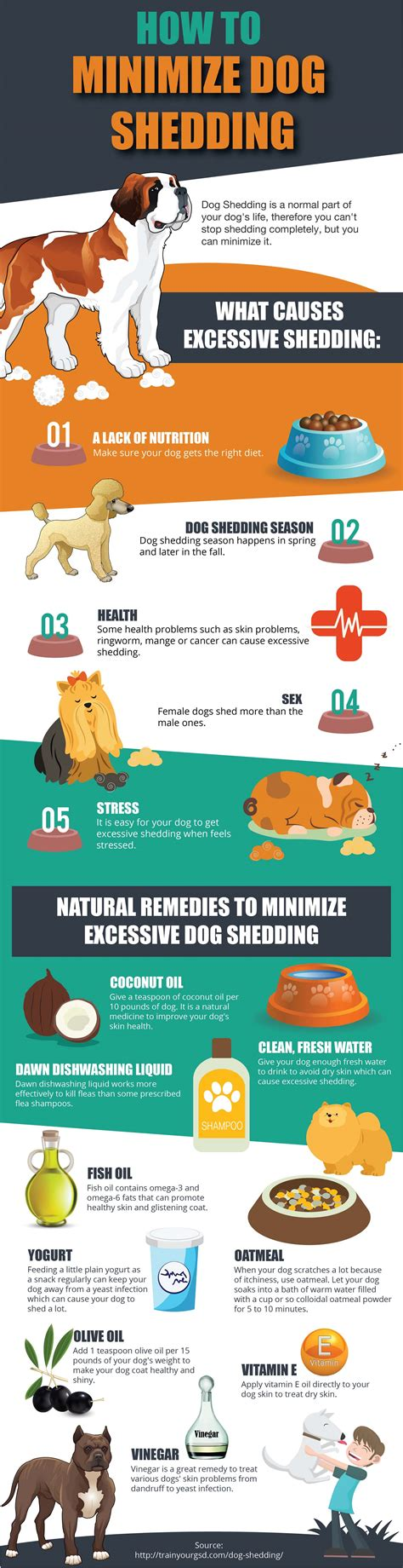 how to stop shedding home remedy how to stop and minimize shedding infographic