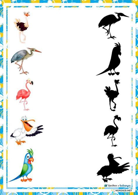 preschool activities shadow birds 171 preschool and homeschool