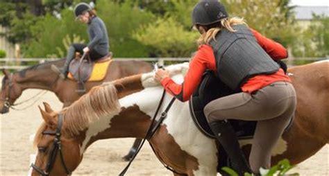 ab wann umstandsmode tragen ab wann kann ein pferd einreiten
