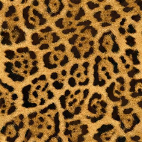 cheetah template wall surfaces texture backgrounds v3 design