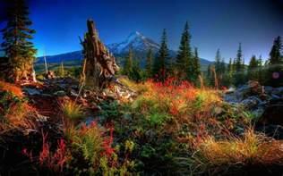 colorful landscapes autumn beautiful colorful landscape nature fields hd